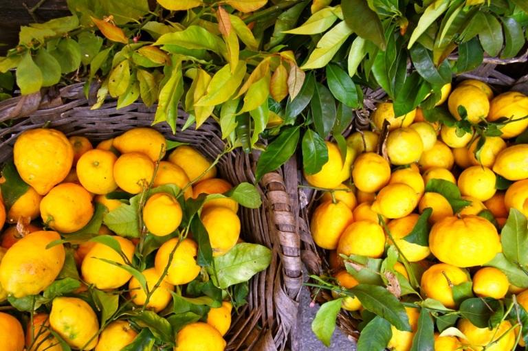 Lemons. Photo Vivie Bjørnstad