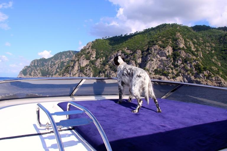 miapåbåten