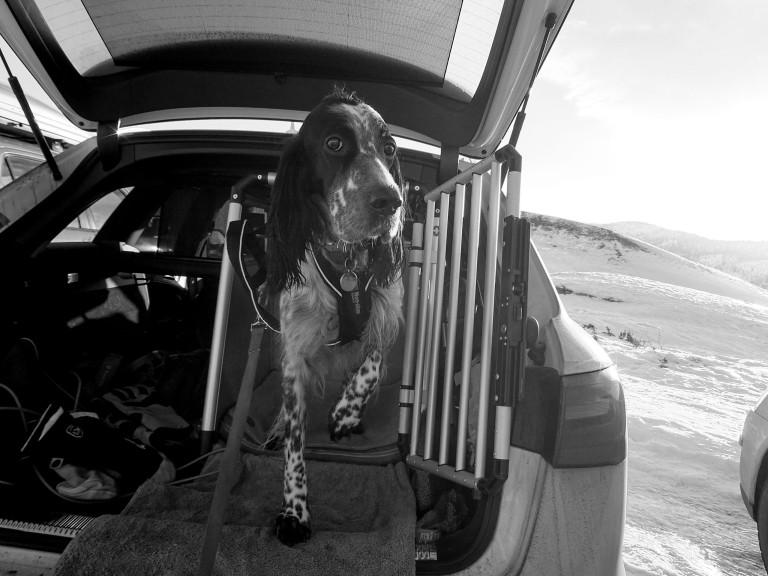 Mia i bilen