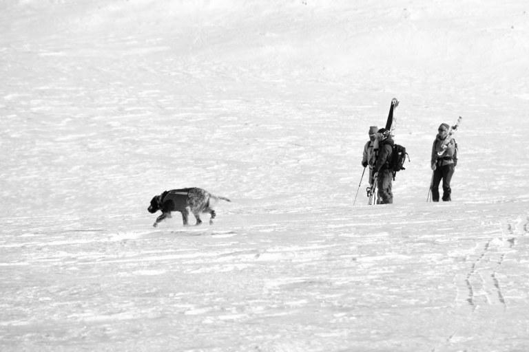 Mads, Bjørnar, Vivie og Mia