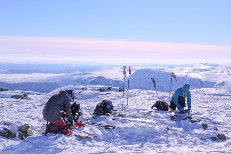 Toppen av Skarvanfjellet